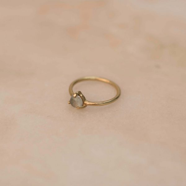 Claw-Ring-Brass-4.2.