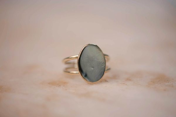 Organic Double Signet Ring 1